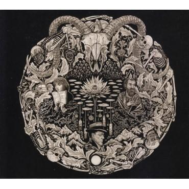 Petrels - Flailing Tomb // LP neuf