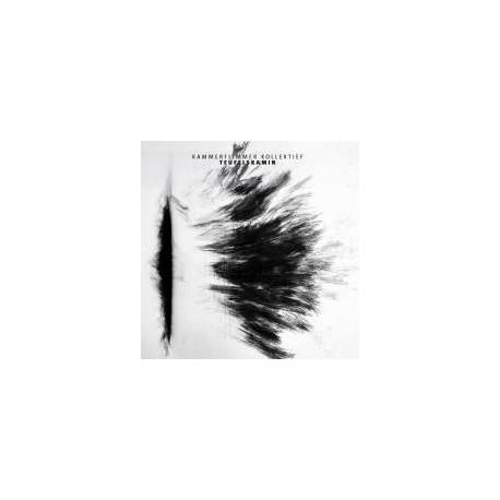 Kammerflimmer Kollektief – Teufelskamin // LP neuf