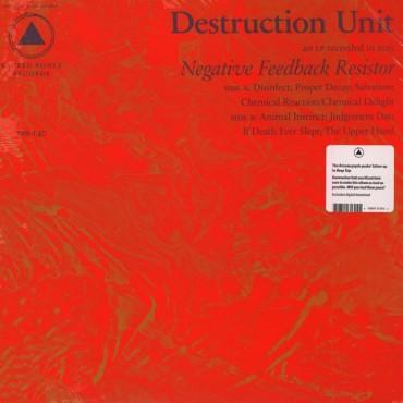Destruction Unit - Negative Feedback Resistor // LP neuf
