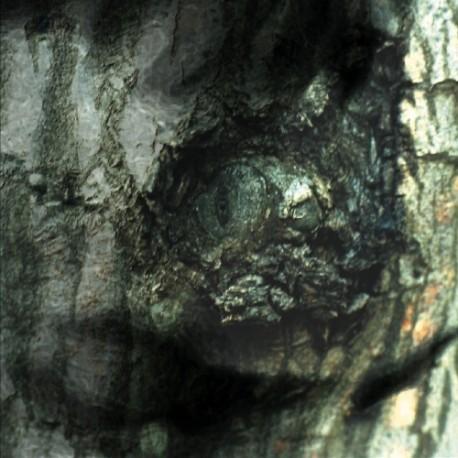 Yann Tiersen - La Valse des Monstres // LP neuf