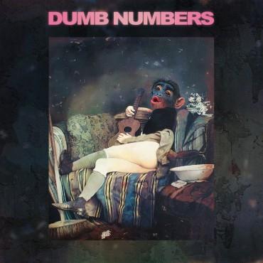 Dumb Numbers - II // LP neuf
