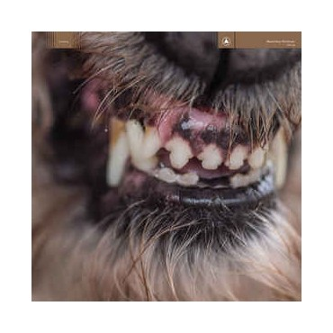Blanck Mass - World Eater // ltd LP