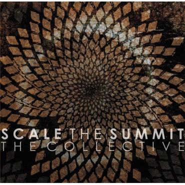 Scale The Summit - The Collective // Ltd silver LP