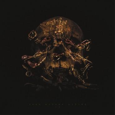 Dark Buddha Rising - II // LP