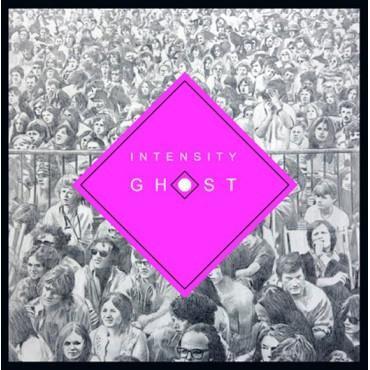 Chris Forsyth & The Solar Motel Band - Intensy Ghost // LP neuf