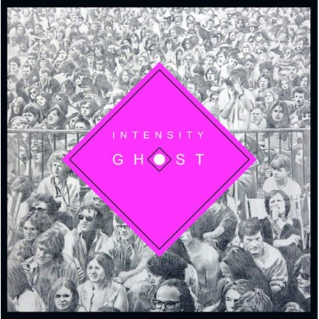 Chris Forsyth & The Solar Motel Band - Intensy Ghost // LP neuf